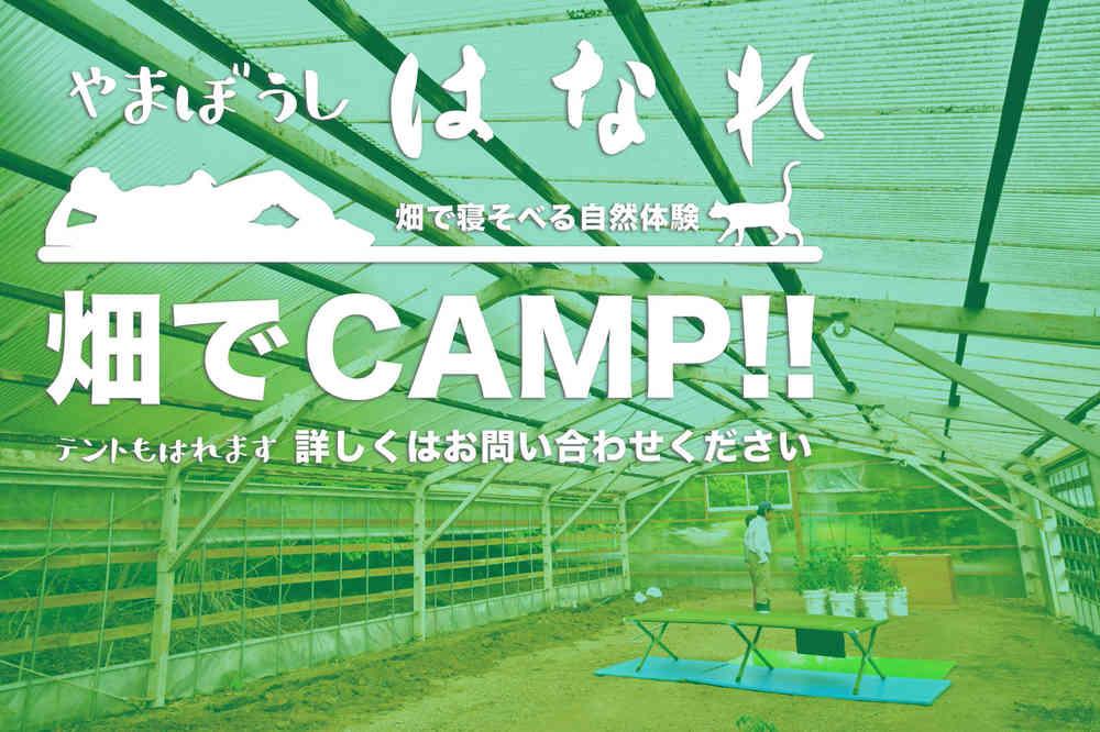 畑でキャンプ!!やまぼうし はなれ の素泊りはじまりました。