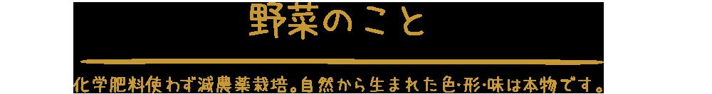 野菜のこと|静岡県富士市の富士山の麓にある農家民宿やまぼうし