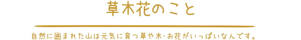 草木花のこと|静岡県富士市の富士山の麓にある農家民宿やまぼうし